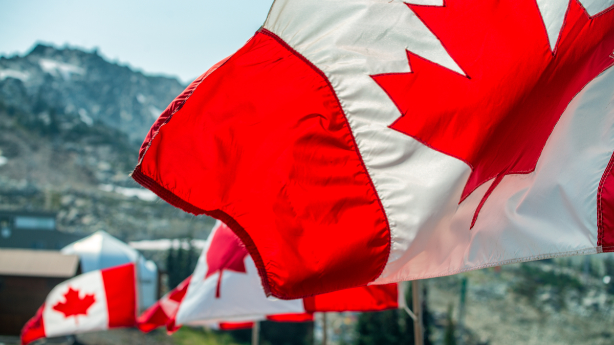 Canadian flags blowing in the wind