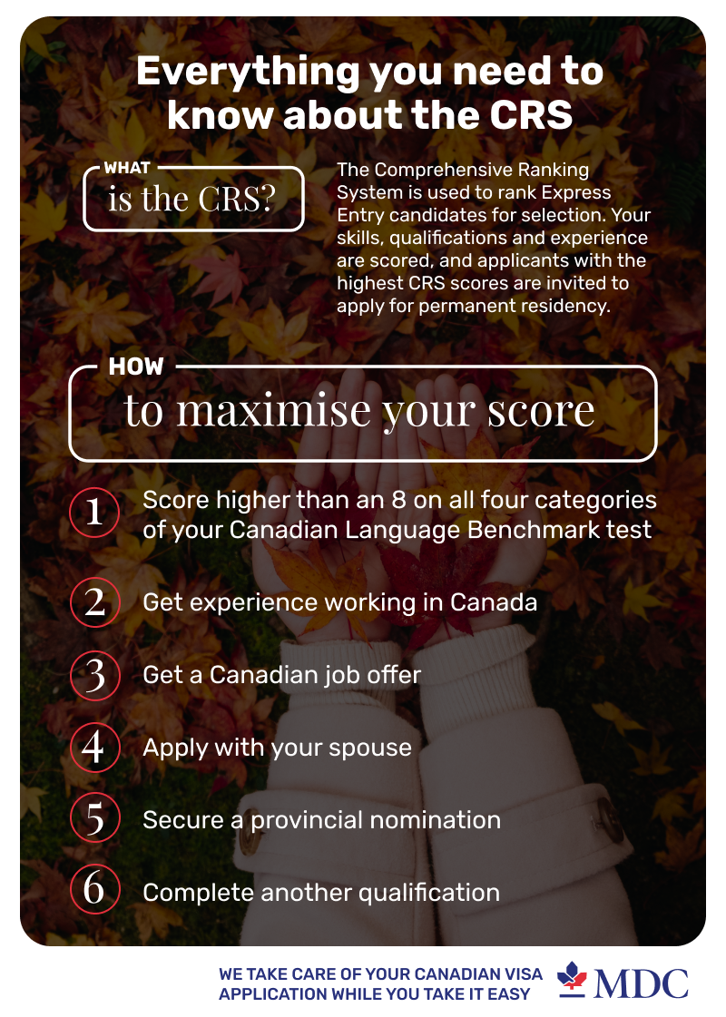 how-to-maximize-your-crs-score-infographic