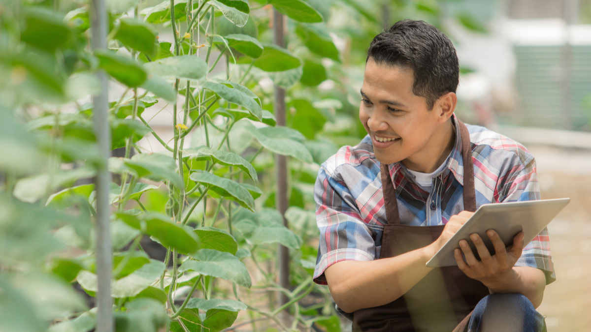 young asian farm worker in greenhouse | jobs in Canada